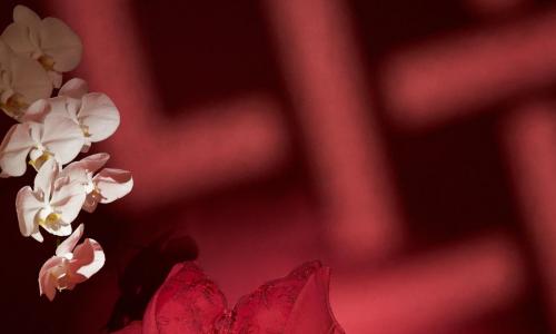 新年新風格,黛安芬帶來節日季專屬紅色單品,閃耀冬日